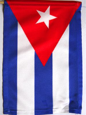 Bandera 18 x 26,5 cm